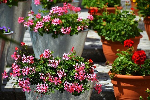 Materialien für Pflanz- und Blumenkübel