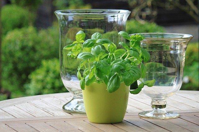Ein schöner Gartentisch lädt zum gemeinsamen Brunch oder Dinner ein!